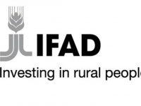 ifad-logo